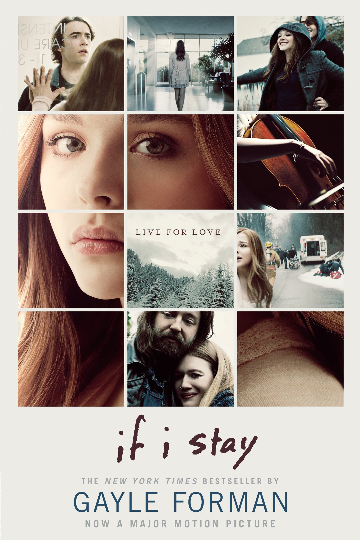 Image result for if i stay book